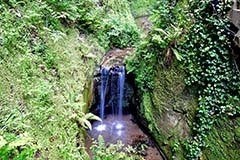 Shanklin Chine Waterfall, Isle of Wight