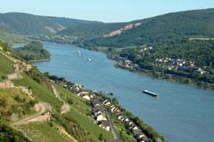 The Rhine Valley