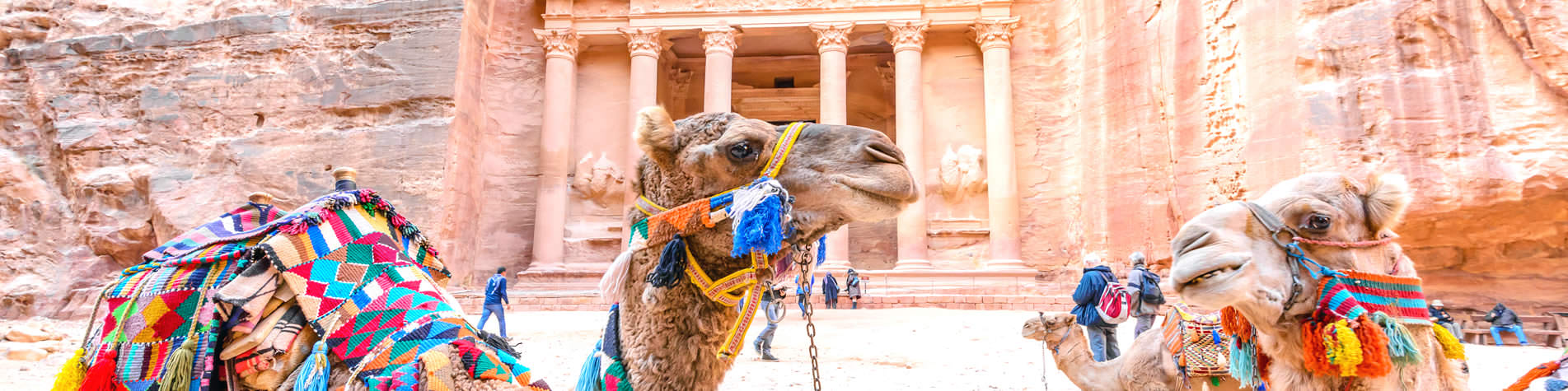 Guided Tour Holidays in Jordan