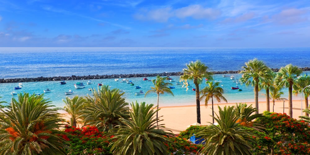 Top 12 Things To Do in Canary Islands