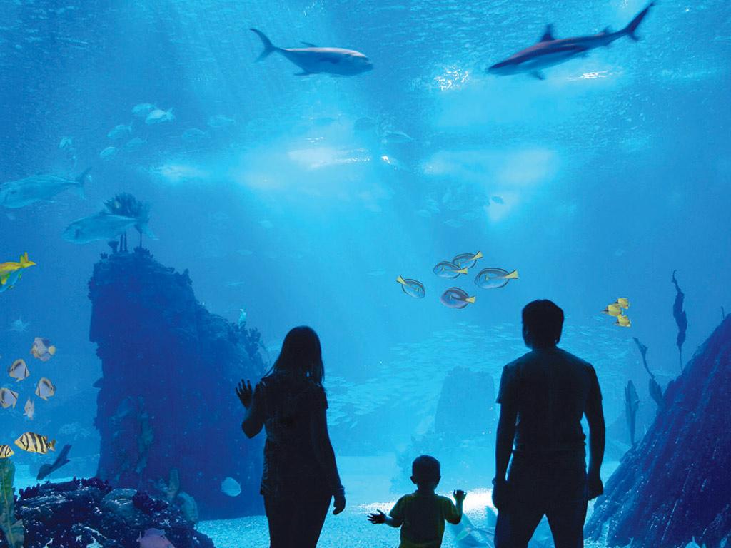 """Antalyas Aquarium"""" title="""
