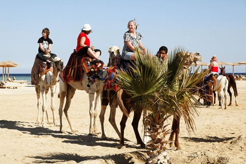 Camel rides Fayrouz Plaza