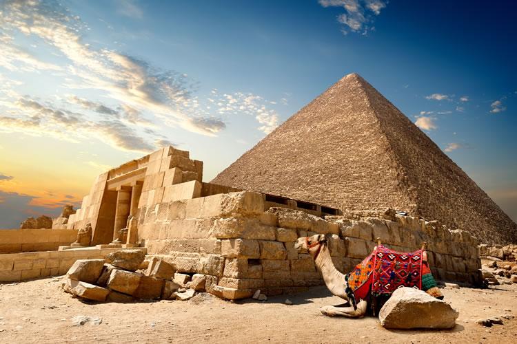 Egypt, Camel, Pyramid