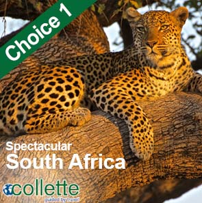 Collette Special Offers - Spectacular South Africa - 15 Days from £2994pp! See here for more information