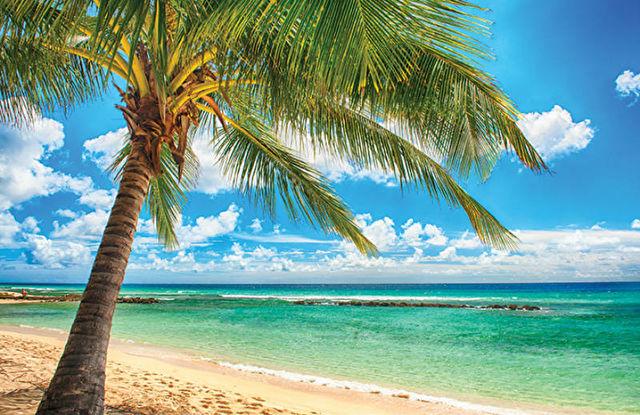 Hays Travel P&O Caribbean Cruise Exclusive