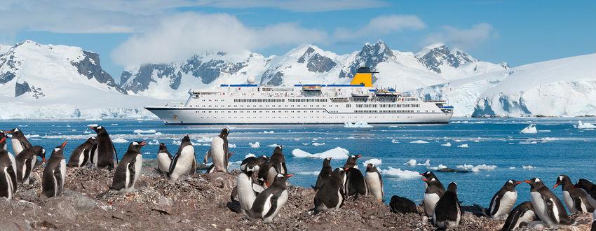 Cruise1st Antarctica Cruises