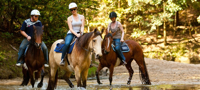 Horse Riding, Eagle Mountain Ranch